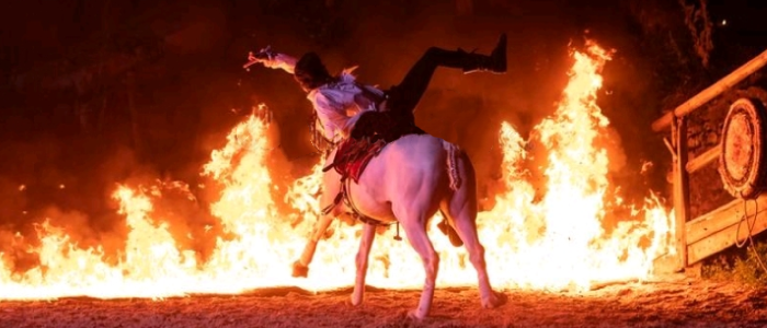 the fire horse effect